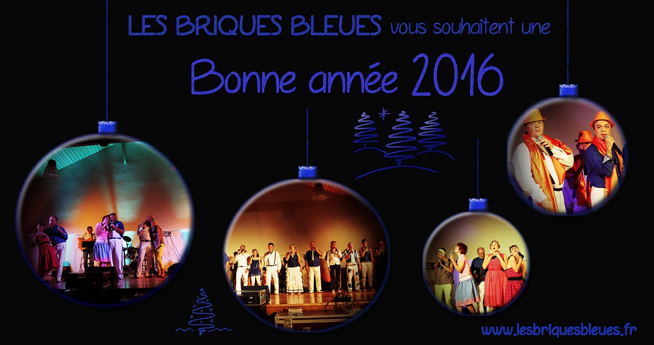 voeux 2016_BB_small